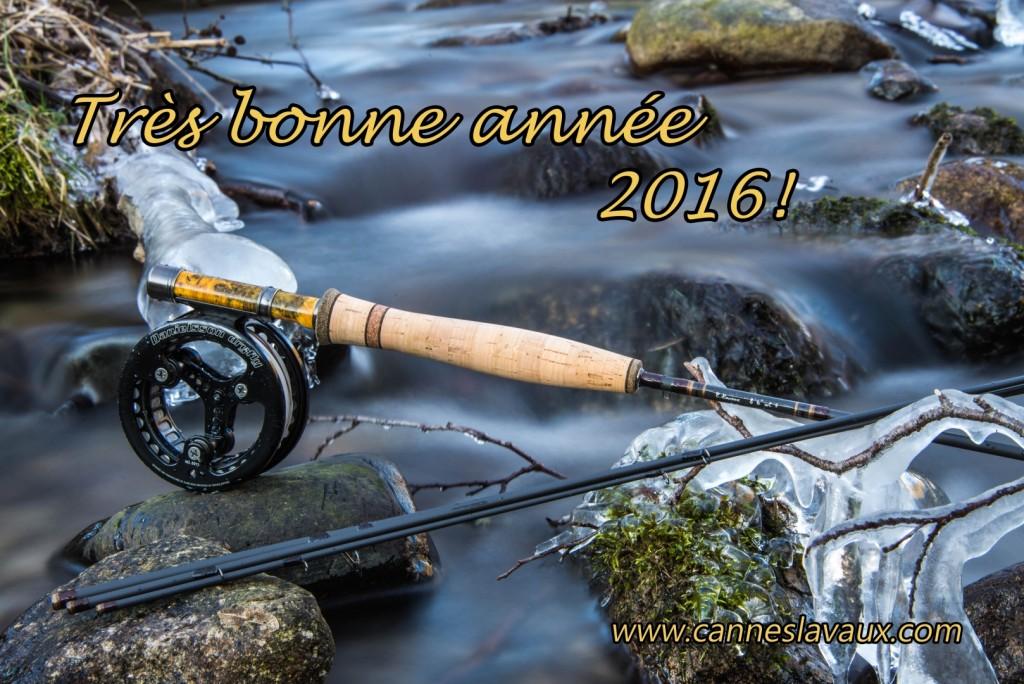 Voeux cannes LAVAUX 2016 (Copier)